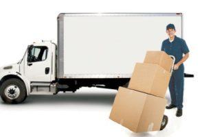 Trách nhiệm của Đại Nam về dịch vụ bốc xếp hàng hóa